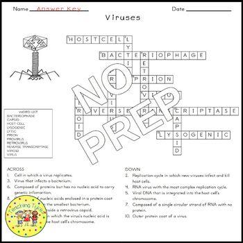 Viruses Biology Science Crossword Coloring Worksheet Middle School