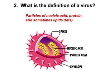 Viruses Powerpoint