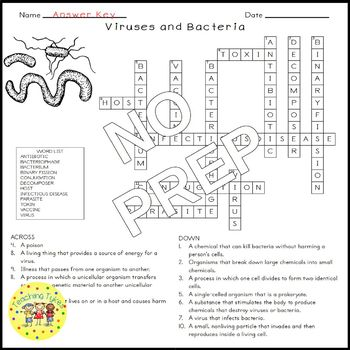 Viruses and Bacteria Science Crossword Puzzle Coloring Worksheet Middle School