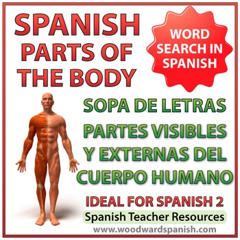 Visible Parts of the Body in Spanish Word Search