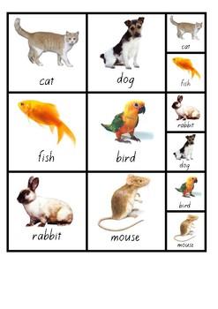 Visual Aid Photo Cards (PECS) - Animals