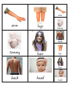 Visual Aid Photo Cards (PECS) - Parts of our bodies