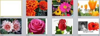 Visual Arts: Flower Power Point (PPTX) (Kindergarten, 1st, 2nd Grade)
