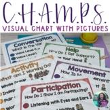 Visual Champs Chart