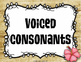 Visual Choral Guide for Vowels & IPA Wall {Hawaiian Tiki Beach}