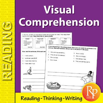Visual Comprehension