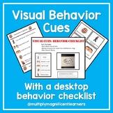 Visual Cues Behavior Checklist
