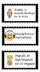 Visual Direction Cards - English/Spanish