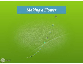 Visual Directions for Flower Craftivity for Mother's Day or any day!