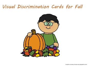Visual Discrimination Cards for Fall