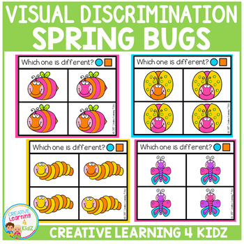 Visual Discrimination Clip Cards: Spring Bugs