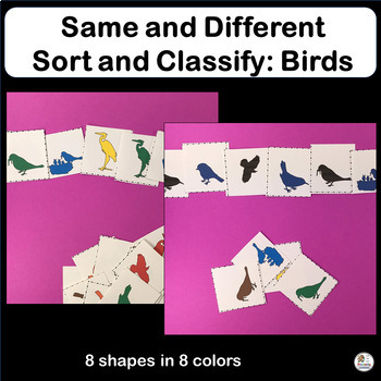 Same and Different: Sort and Classify Birds in Preschool & Kindergarten