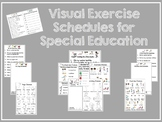 Visual Exercise Schedules for Special Education