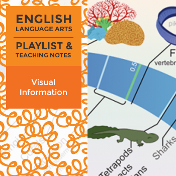 Visual Information - Playlist and Teaching Notes