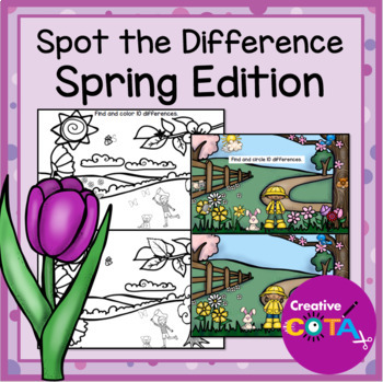 Visual Perception Spot the Difference Spring