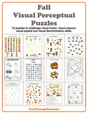 Visual Perceptual Activities for Fall