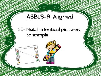 Visual Performance Matching (Autism or Early Learners)