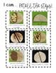 Visual Recipe for Language: Peanut Butter Quesadilla