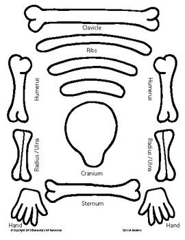 El Dia De Los Muertos - Day of the Dead Skeleton Cutout Elementary Arts