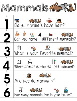 Visual Supports for Basic Animal Groups