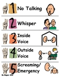 Visual Voice Scale