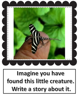 Visual Writing Prompts for The Primary Grades