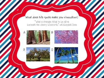 RL.7 Visualization PowerPoint and Lesson Plan - American the Beautiful