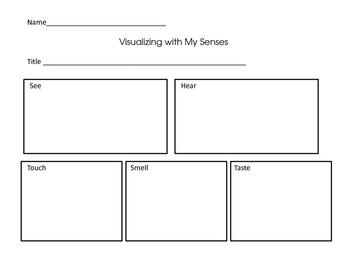 Visualizing Using My Senses