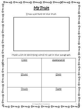 Visualizing and Descriptive Writing Unit