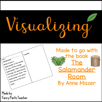 Visualizing with The Salamander Room
