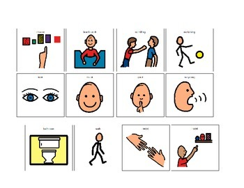 Visuals for Academic Instruction and Behavior *Autism*