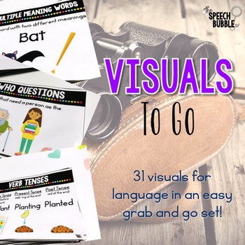 Visuals to Go