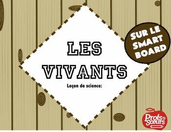 Vivants ou non-vivants // Leçon sur Notebook