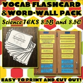 Vocab Flashcard & Word Wall Pack for Eighth Grade Science TEKS Unit 1 Part 2