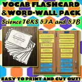Vocab Flashcard & Word Wall Pack for Fifth Grade Science TEKS Unit 4