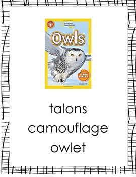 Vocab Lesson: National Geographic Kids Owls