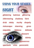 Vocab poster - Use Your Senses Sight