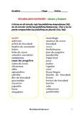 Vocabulario Navideño - género y número