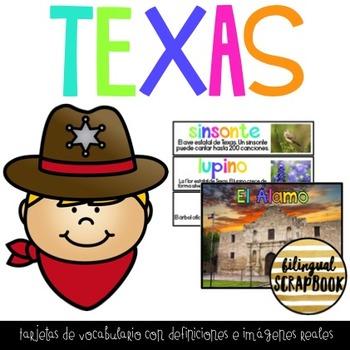 Vocabulario de Texas (Texas Vocabulary Cards in Spanish)