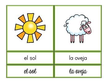 Vocabulario de la Primavera / Spring Vocab Matching Spanish