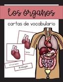 Vocabulario de los órganos y sistemas del cuerpo /  Organs & Body Vocab Spanish