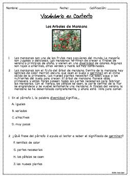 Vocabulario en Contexto~Material de Instrucción y Practica para el STAAR