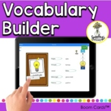 Vocabulary Activities - Word-Finding - Semantic Cues - Exp