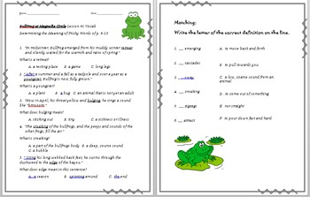 Vocabulary Activities for Bullfrog at Magnolia's Circle