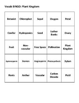 Vocabulary Bingo: Plant Kingdom