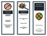 Vocabulary Brochure Foldable