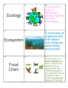 Vocabulary Cards- Set 3:  Middle School Science
