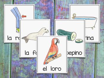 Vocabulary Cards for Spanish Syllables - DFLPT ~ Banco de Palabras - Sílabas