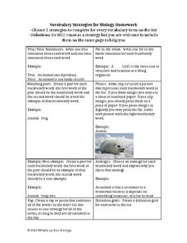 Vocabulary Choice Chart
