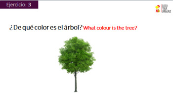 Vocabulary Exercise  (The colours)  with 20 interactive exercises